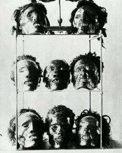 musee de l'homme
